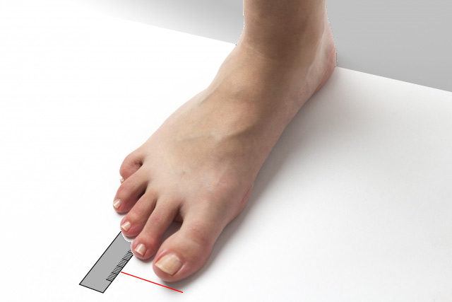 足長と足囲を自分で計測