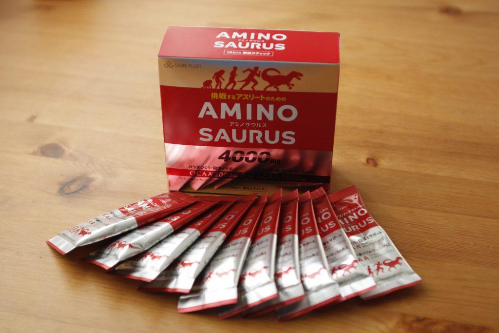 アミノサウルス 箱